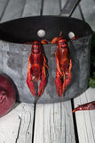 Red steamed crayfish on the wooden background. Boiled crawfish. Woden background. Rustic style. Royalty Free Stock Images
