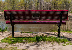 Red Steel Bench in the woods Royalty Free Stock Images
