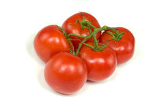 Red Stem Tomatoes. A bunch of ripe red tomatoes attached to their stems are isolated against a white background stock photography