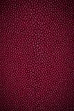 Red stingray skin texture Royalty Free Stock Photos