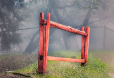 Red Stockade Fence in Forest. Isolated red stockade fence in forest fog Stock Image