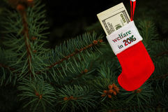 Red stocking full of hundred-dollar on the Christmas tree Stock Images