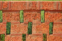 Red Stone Bricks with Wheat plantation background Stock Image