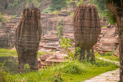 Red stone forest. In Hunan province Royalty Free Stock Images