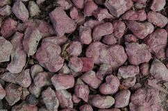 Red stone. Red gravel. Photo background of red stones. A path of decorative stones stock photos