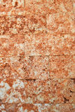 Red stone texture Royalty Free Stock Image