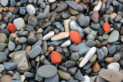 Red stones on a pebble beach background Royalty Free Stock Photo