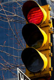 Red stop light. In downtown Royalty Free Stock Photo