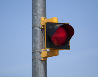 Red Stop Light Stock Photography