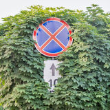 Red stop sign with trees Stock Photo