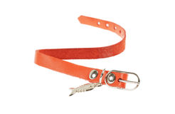 Red  Strap Royalty Free Stock Images
