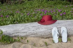 Red straw hat with white sandals on sand beach and beach morning glory background royalty free stock photo