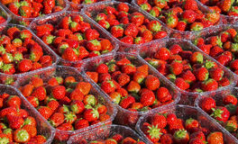 Red strawberrie Royalty Free Stock Image