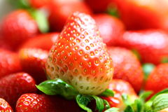 Red strawberries Royalty Free Stock Images
