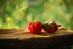 Red strawberries Stock Photo