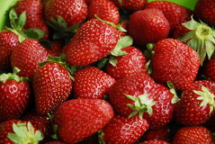 Red strawberries Stock Images