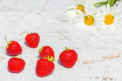 Red strawberries on a background with white daisies Royalty Free Stock Photography