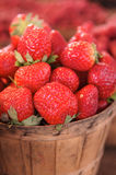 Red Strawberries in a basket Stock Photos