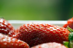Red strawberries Royalty Free Stock Image
