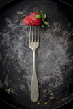 Red strawberries in different positions Royalty Free Stock Photography