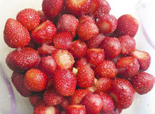 Red strawberries fruit in plate Stock Images