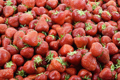 Red strawberries, full frame, close up Stock Images