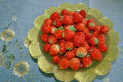 Red strawberries on gold plate Stock Photography
