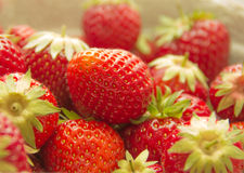 Red strawberries. With green branches, picture up close Stock Photography