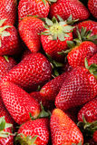 Red Strawberries Royalty Free Stock Photography