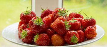 Red Strawberries on a plate Stock Photography