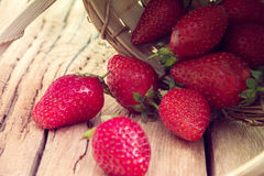 Red strawberries rolled out from a basket Royalty Free Stock Photo