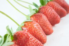 Red strawberries in a row Royalty Free Stock Image