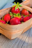 Red strawberries in twiggen basket Royalty Free Stock Photo