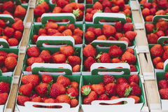 Red Strawberries on White and Green Paper Bag Stock Photo