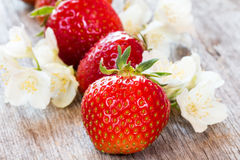 Red strawberries and wild flowers. Royalty Free Stock Images