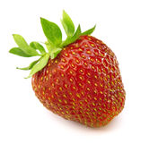 A red strawberry. Isolated on a white background Stock Image