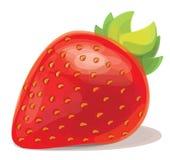 Red strawberry. Stock Photos