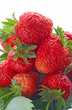 Red strawberry Royalty Free Stock Image