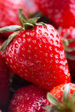 Red Strawberry closeup view Royalty Free Stock Photo