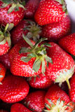 Red Strawberry closeup view Stock Images