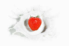 Red strawberry falling into the milky splash Royalty Free Stock Photos