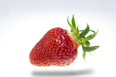 A red strawberry Royalty Free Stock Image