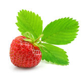 Red strawberry fruit with green leafs isolated Stock Photo