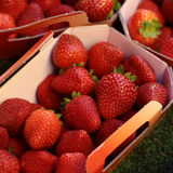 Red strawberry fruit for sale. Photo closeup full of clean organic natural fresh tasty ripe red garden strawberry fruit vitamin for healthy eating nutrition diet Royalty Free Stock Images