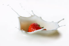Red strawberry fruits falling into the milk Stock Photography