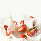 Red strawberry fruits falling into the milk Royalty Free Stock Images