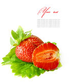 Red strawberry fruits with green leafs isolated on Stock Images