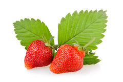 Red strawberry fruits with green leaves Royalty Free Stock Photo