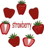 Red strawberry, green leaves, slices on white background, hand drawing Stock Images