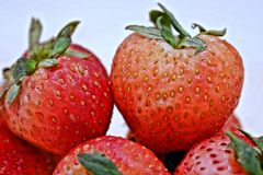 Red Strawberry Group. Close Up Red Strawberry Group Stock Photography